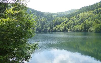 Séjour dans les Vosges : 5 choses à faire autour de Brouvelieures